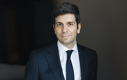 Image: Marco Lippi - Business Law Lawyer